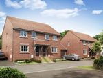 """Thumbnail to rent in """"Finchley"""" at Summerleaze Crescent, Taunton"""