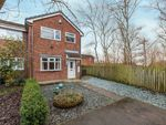 Thumbnail to rent in Verity Rise, Darlington