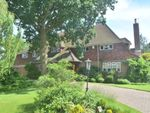 Thumbnail to rent in Sunnydale, Orpington