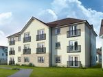 Thumbnail to rent in Lapwing Drive, Dunfermline