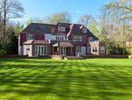 Thumbnail for sale in Silverdale Avenue, Ashley Park, Walton-On-Thames, Surrey