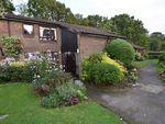 Thumbnail for sale in 8 Jackson Close, Elmbridge Village, Cranleigh, Surrey