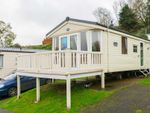 Thumbnail to rent in Dartmouth Road, Paignton