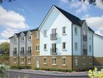 "Thumbnail to rent in ""Rastell House"" at Poethlyn Drive, Costessey, Norwich"