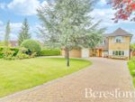 Thumbnail for sale in Heronway, Hutton Mount, Brentwood, Essex