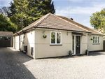 Thumbnail to rent in Pinehill Road, Crowthorne, Berkshire