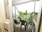 Thumbnail to rent in Pinetree Court, Danestrete, Stevenage, Hertfordshire