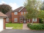 Thumbnail for sale in Llewellyn Park, Twyford, Berkshire