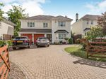 Thumbnail for sale in Carlyon Bay, St Austell, Cornwall