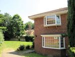 Thumbnail to rent in Shelton Close, Guildford