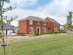 Thumbnail to rent in Bran Rose Way, Holmer, Hereford