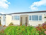 Thumbnail to rent in Lane, Newquay, Cornwall