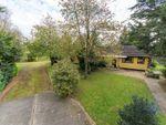 Thumbnail for sale in Fen Lane, Garboldisham, Diss, Norfolk