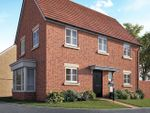 "Thumbnail to rent in ""The Pevensey"" at Mill Road, Hailsham"