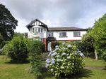 Thumbnail to rent in Dyffryn, Goodwick