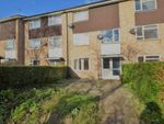Thumbnail for sale in Comet Road, Hatfield, Hertfordshire