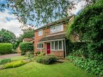 Thumbnail to rent in Twycross Road, Godalming