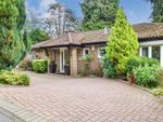 Thumbnail for sale in Dunedin Drive, Caterham, Surrey