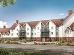 Thumbnail to rent in Seymour Road, Buntingford