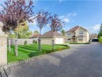 Thumbnail for sale in London Road, Harston, Cambridge