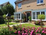 Thumbnail to rent in Rowan Close, Harrogate