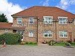 Thumbnail to rent in Ashgrove, York
