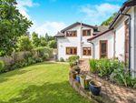 Thumbnail for sale in Carron Lane, Midhurst, West Sussex, .