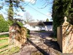 Thumbnail for sale in Lymington Bottom Road, Medstead, Alton, Hampshire