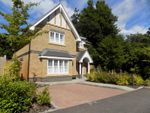 Thumbnail to rent in Meadows Drive, Camberley, Surrey