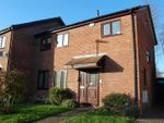 Thumbnail to rent in Hoadlands, Petersfield