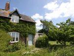Thumbnail to rent in Salterton, Salisbury