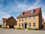 "Thumbnail to rent in ""Buckingham"" at Park View, Moulton, Northampton"