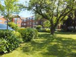 Thumbnail to rent in Milward Court, Warwick Road, Reading