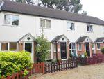 Thumbnail to rent in London Road, Bagshot, Surrey