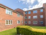 Thumbnail to rent in Marmet Avenue, Letchworth Garden City