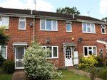 Thumbnail for sale in Felixstowe Close, Lower Earley, Reading, Berkshire