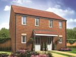 Thumbnail for sale in Plot 51 Morden, Hampton Gardens, Hampton, Peterborough