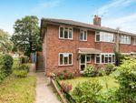 Thumbnail to rent in Anstey Lane, Alton
