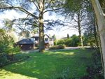 Thumbnail for sale in Philips Close, Beech Hanger Road, Grayshott, Hindhead
