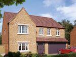 "Thumbnail to rent in ""The Kirkham"" at Boughton Road, Moulton, Northampton"