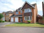 Thumbnail for sale in Snowdrop Place, Spalding