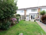 Thumbnail to rent in Broom Knoll, East Bergholt, Colchester