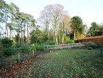 Thumbnail for sale in Development Site At Derwentbank, Portinscale, Keswick, Cumbria