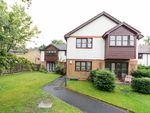 Thumbnail for sale in Cherbury Close, Bracknell