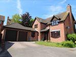 Thumbnail for sale in Goldcrest Close, Longridge Park, Colchester