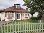 Thumbnail for sale in 10 Woodland Way, Shirley, Croydon, Surrey