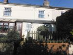 Thumbnail to rent in Dottery Road, Bridport