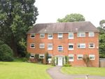 Thumbnail for sale in Acland Avenue, Colchester