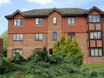 Thumbnail to rent in Oldfield Road, Hampton