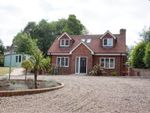 Thumbnail to rent in The Avenue, Welwyn